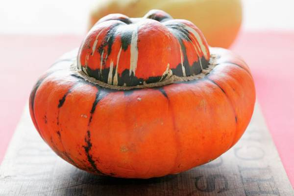 Cucurbits Photograph - Turk's Turban Squash (red Kuri) by Foodcollection