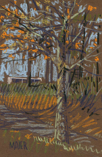 Autumn Drawing - Turning Leaves by Donald Maier