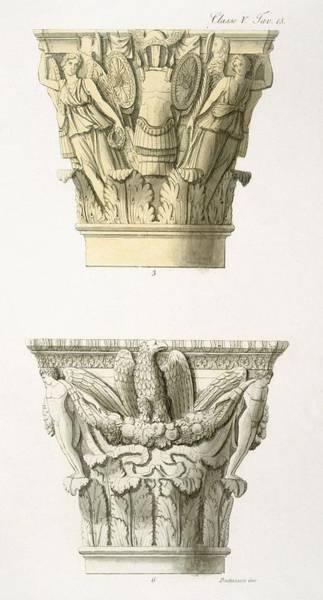 Eagle Drawing - Two Column Capitals by .