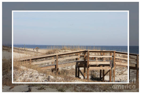 Photograph - Tybee Island Boardwalks by Carol Groenen