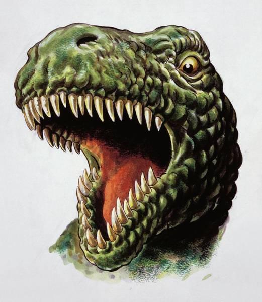 Wall Art - Photograph - Tyrannosaurus Rex by Deagostini/uig/science Photo Library
