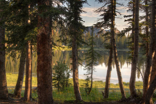 Uinta Photograph - Uinta Mountains Utah by Douglas Pulsipher