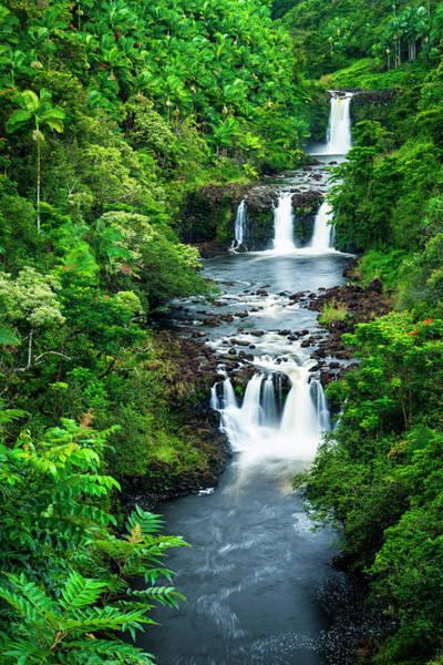 Wall Art - Photograph - Umauma Falls Along The Lush Hamakua by Russ Bishop
