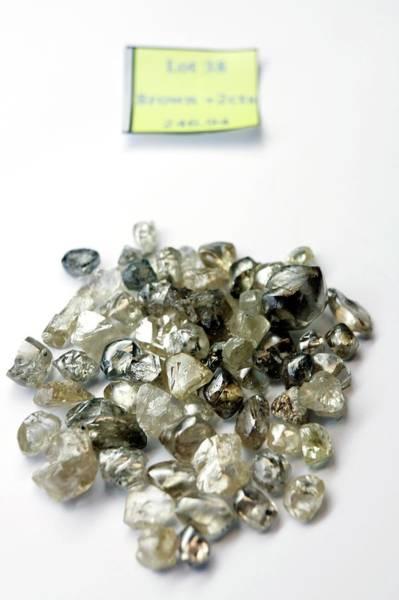 Uncut Photograph - Un-cut Diamonds by Christophe Vander Eecken/reporters/science Photo Library
