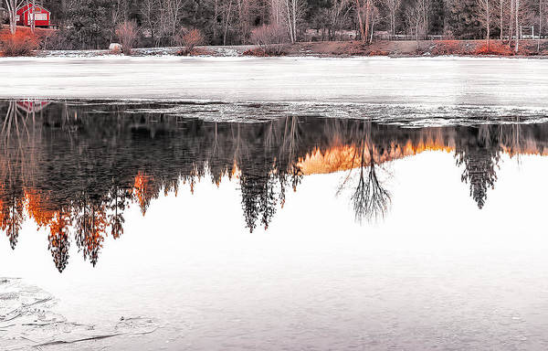 Wall Art - Photograph - Under The Ice by Nancy Marie Ricketts