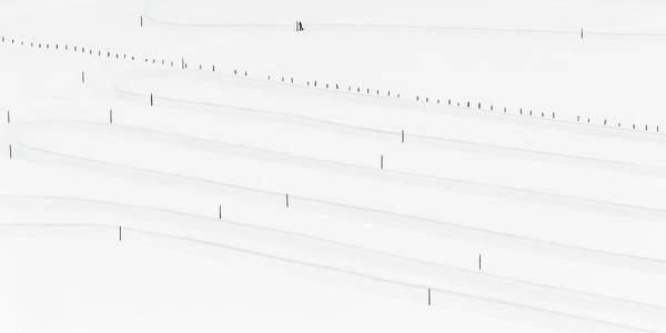 Lisa Photograph - Untitled by Margit Lisa Roeder