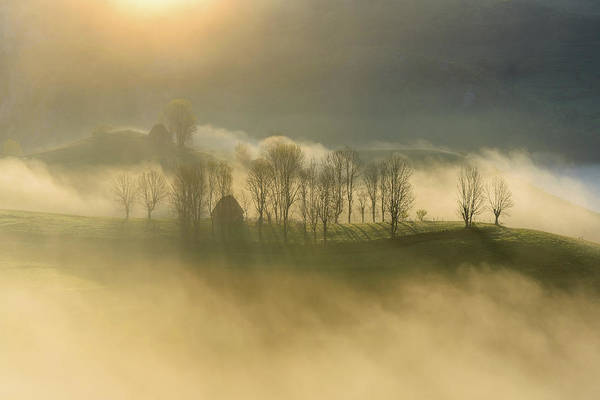 Misty Photograph - Untitled by Ovidiu Satmari