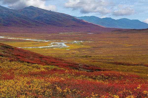 Wall Art - Photograph - Usa, Alaska, Brooks Range by Jaynes Gallery