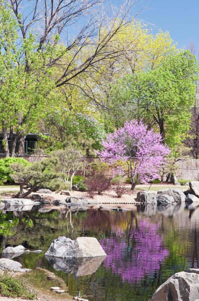 Co Wall Art - Photograph - Usa, Co, Denver Denver Botanic Gardens by Trish Drury