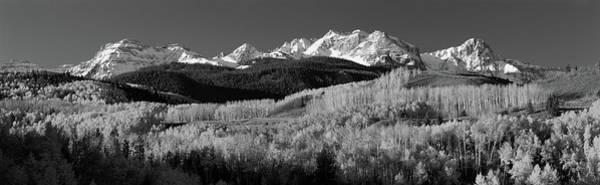 Usa, Colorado, Rocky Mountains, Aspens Art Print