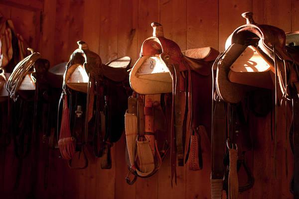 Barn Photograph - Usa, Colorado, Saddles In Barn by John Kelly