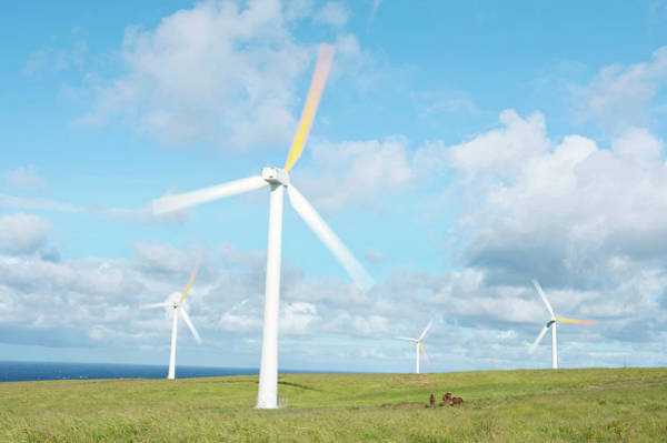 Usa, Hi, Kohala, Wind Turbines Art Print