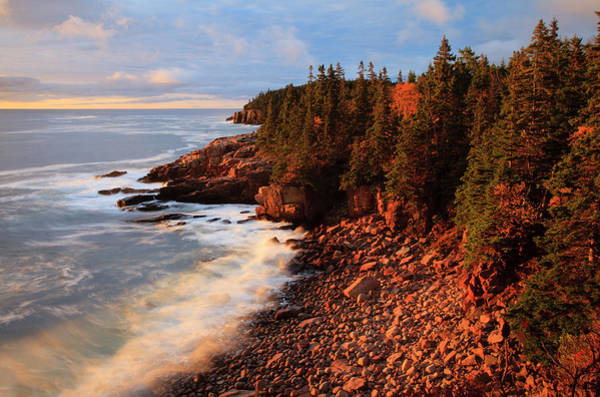 Acadia National Park Wall Art - Photograph - Usa, Maine, Acadia National Park, Ocean by Joanne Wells