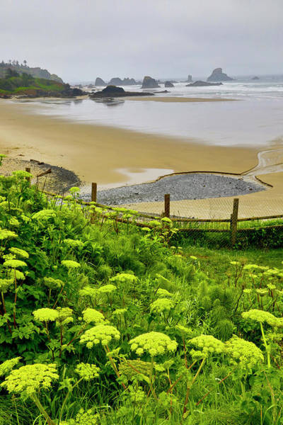 Ecola State Park Photograph - Usa, Oregon, Ecola State Park by Jaynes Gallery