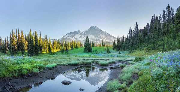 Wall Art - Photograph - Usa Washington State Mt Rainier by Gary Luhm