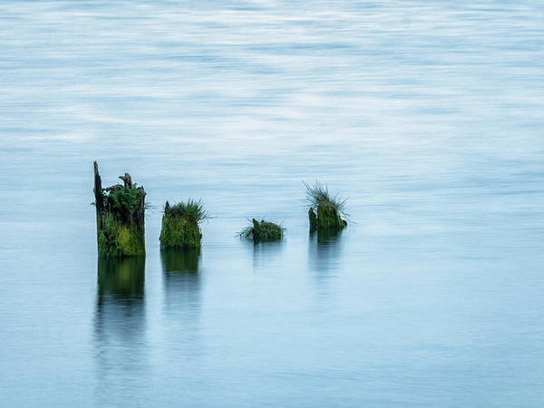 Wall Art - Photograph - Usa, Washington State, Old Pilings by Ann Collins