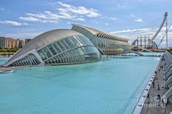 Pyrography - Valencia-12 by Mauro Celotti