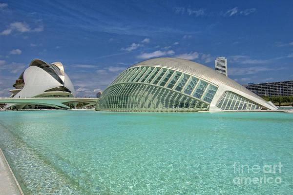 Pyrography - Valencia-18 by Mauro Celotti