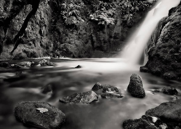 Photograph - Vennford Brook Waterfall by Pete Hemington
