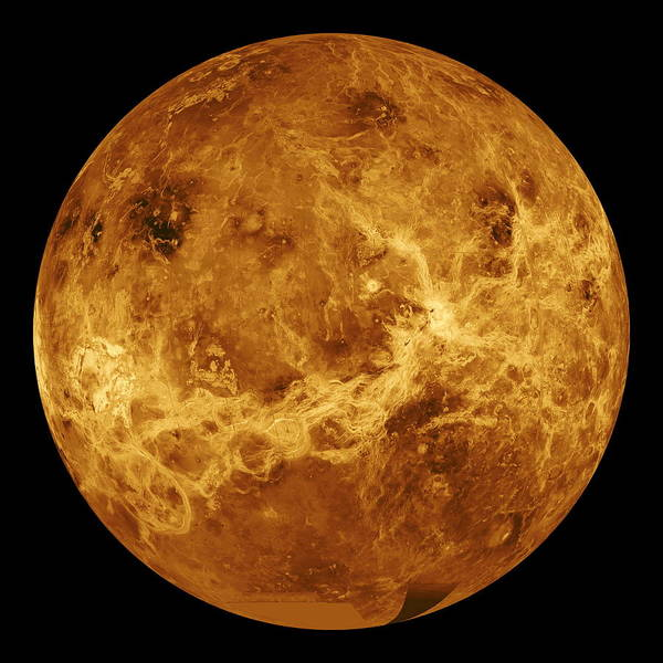 Wall Art - Photograph - Venus by Nasa