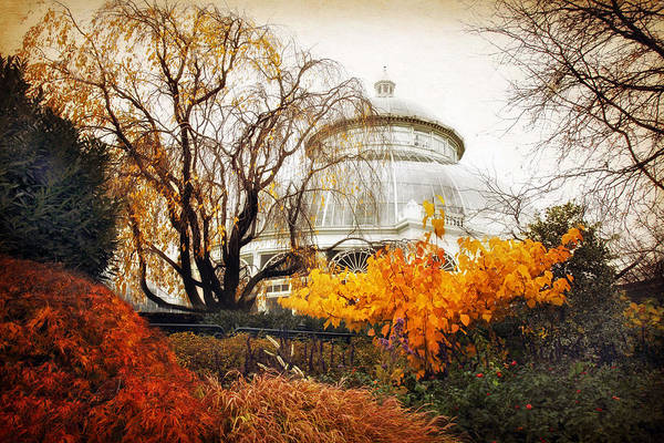 Photograph - Victorian Autumn by Jessica Jenney