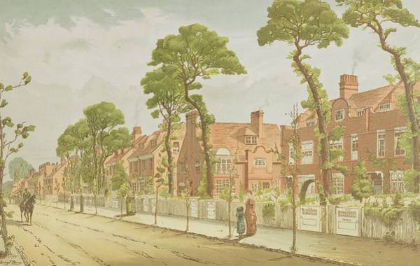 Garden Drawing - View Of Bedford Park, 1882 by English School