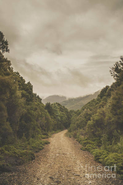 Humid Photograph - Vintage Australian Landscape. Rosebery Tasmania by Jorgo Photography - Wall Art Gallery