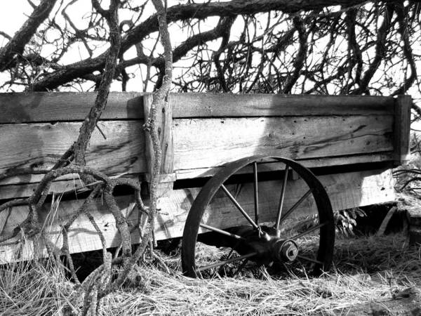 Wagon Wheel Photograph - Vintage Farm Wagon by Will Borden