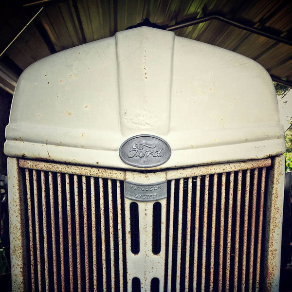 Photograph - Vintage Ford by Natasha Marco