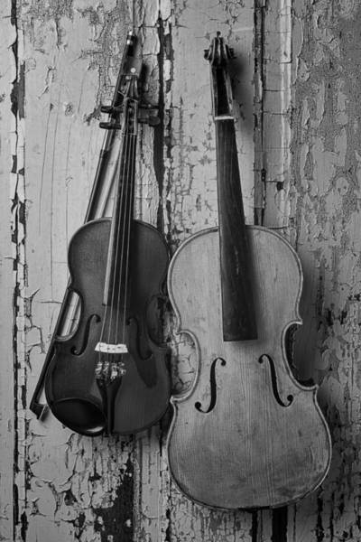Paint Chips Photograph - Viola And Violin by Garry Gay