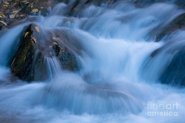 Photograph - Virgin River Rapids by Fred Stearns