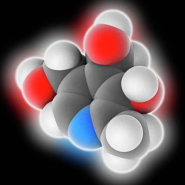 Biochemistry Photograph - Vitamin B6 Pyridoxine Molecule by Laguna Design