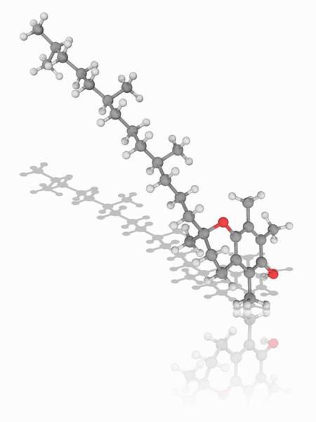 Wall Art - Photograph - Vitamin E Organic Compound Molecule by Laguna Design/science Photo Library