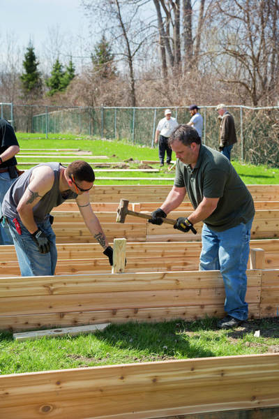 Non Profit Photograph - Volunteers Building Raised Beds by Jim West