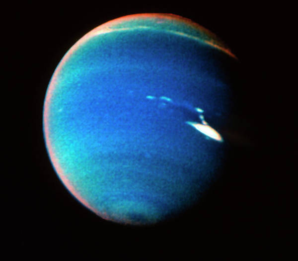 Imagery Photograph - Voyager 2 Image Of Neptune by Nasa/science Photo Library