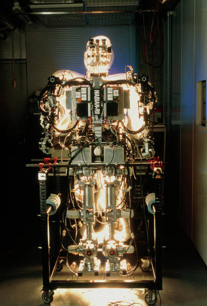 Wall Art - Photograph - Wabian Android Robot by Peter Menzel/science Photo Library