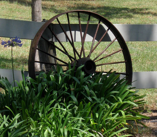 Photograph - Wagon Wheel by Pamela Walton