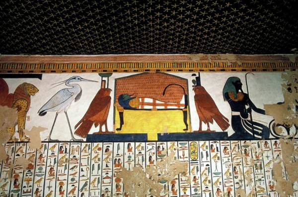 Hieroglyph Photograph - Wall Paintings by Patrick Landmann/science Photo Library