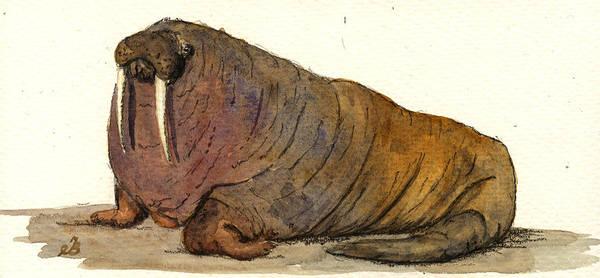 Wall Art - Painting - Walrus by Juan  Bosco