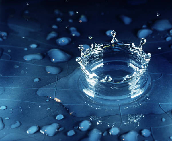 High Speed Photograph - Water Droplet Impact by Adam Hart-davis/science Photo Library