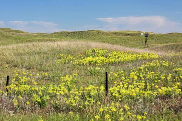 Nebraska Landscape Photograph - Water Pump Windmill by Jim West