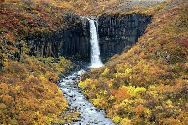Basalt Columns Photograph - Waterfall And Basalt Rock by Steve Allen/science Photo Library