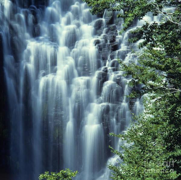Wall Art - Photograph - Waterfall. Auvergne. France by Bernard Jaubert