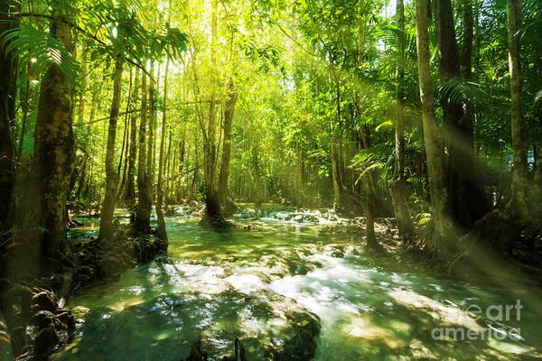 Wall Art - Photograph - Waterfall In Rainforest by Atiketta Sangasaeng