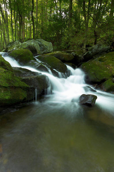 Freshwater Wall Art - Photograph - Waterfall, Middle Prong Trailhead by Maresa Pryor