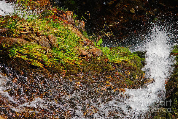 Photograph - Waterfall  by Nick  Biemans