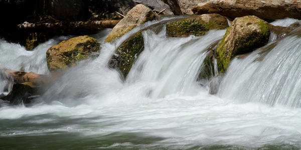 Photograph - Waterfall - Zion National Park by Natalie Rotman Cote