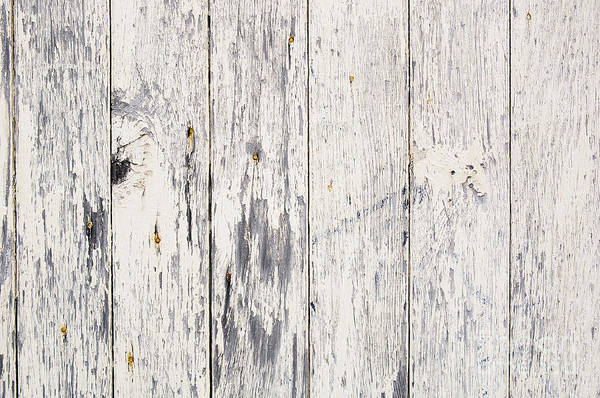 Wood Planks Photograph - Weathered Paint On Wood by Tim Hester