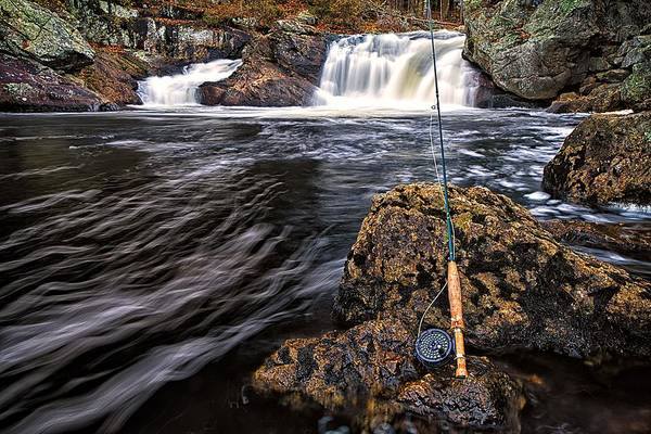 Photograph - 1 Weight On The Isinglass. by Jeff Sinon