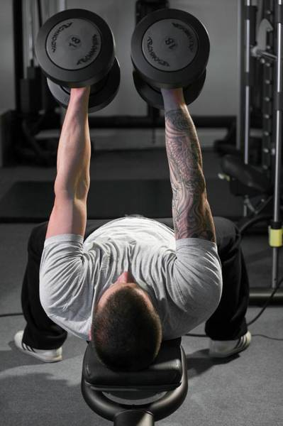 Wall Art - Photograph - Weight Training by David Woodfall Images/science Photo Library